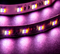 Introducing 5-in-1 RGB LED Strip Light