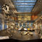 Natural History Museum of LA County Opens New Dinosaur Hall with Electrosonic